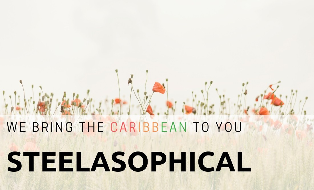 Steelasophical Wedding Caribbean Steelband and DJ Entertainer